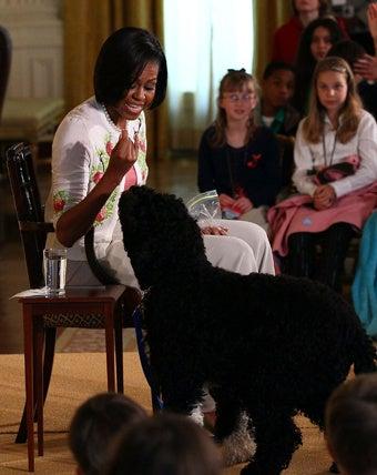 Obamas' Dog Bo is Worth $1,600