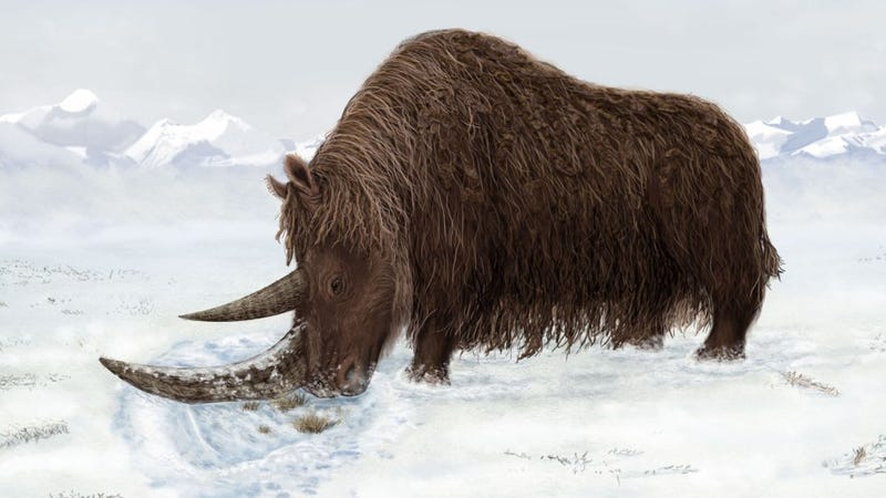 Where did the giant mammals of the ice age come from?