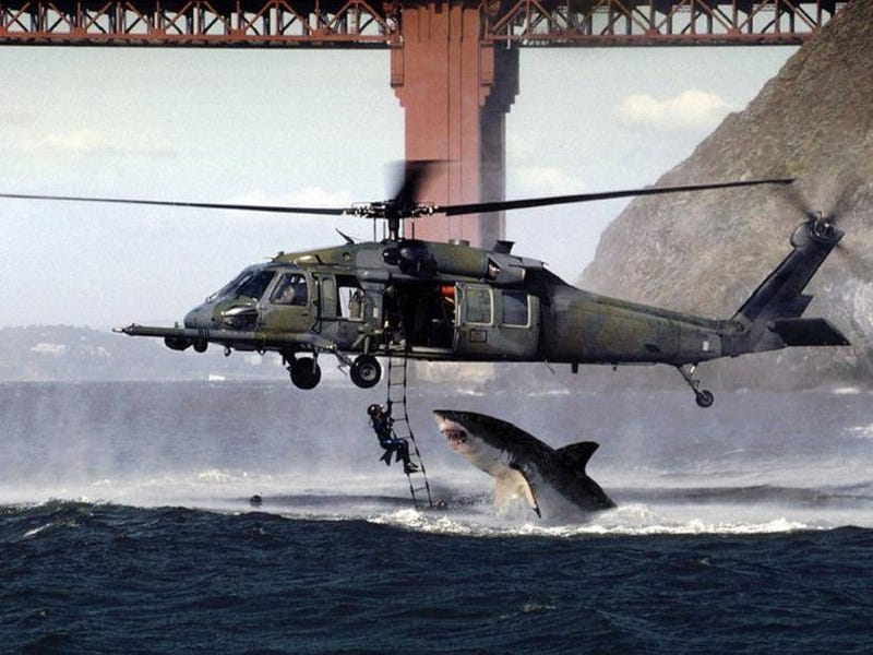 There's a Soldier-Dangling-Above-a-Shark Photo That's Actually Real