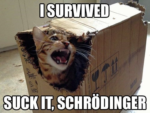 Yeah, Schrodinger. Take that!
