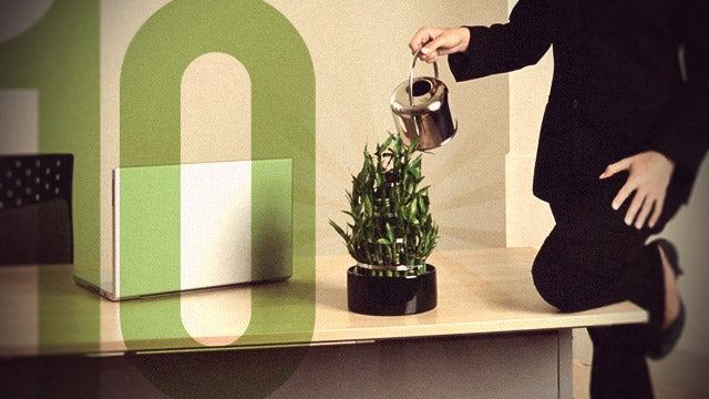 10 Steps to a Healthier Office
