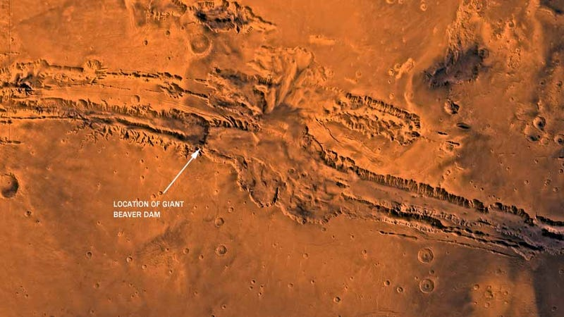 Is Mars Ruled by Beavers?