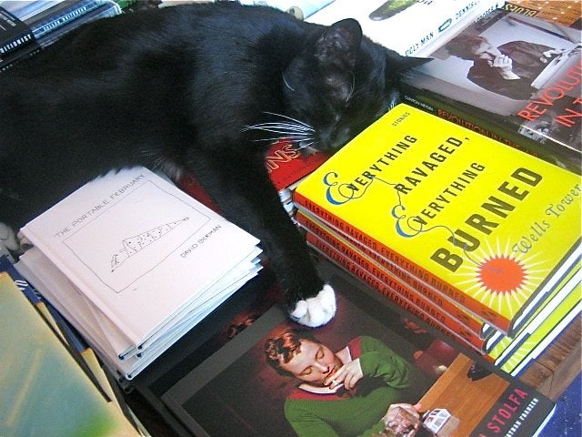 A Guide To Finding Bookstore Cats