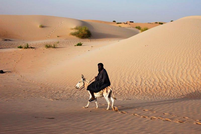 Murder in Mali