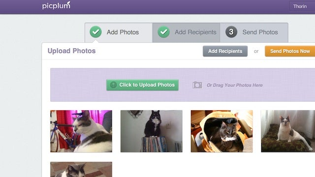 PicPlum Automatically Sends Photos to Your Family and Friends via Email, Snail Mail