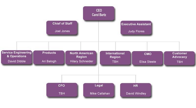 Carol Bartz Gets New Yahoo Org Chart Half Right