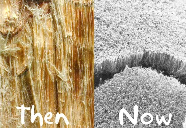 Are Nanotubes the New Asbestos?