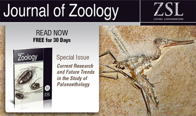 "Read the Journal of Zoology's Special ""Paleobehavior"" Issue Free!"