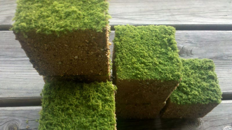 """Build Your Own Lawn with These """"Real"""" Minecraft Grass Cubes"""
