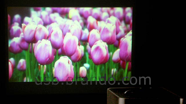A Built-In Projector Manages To Make This Crappy Media Player Even Worse