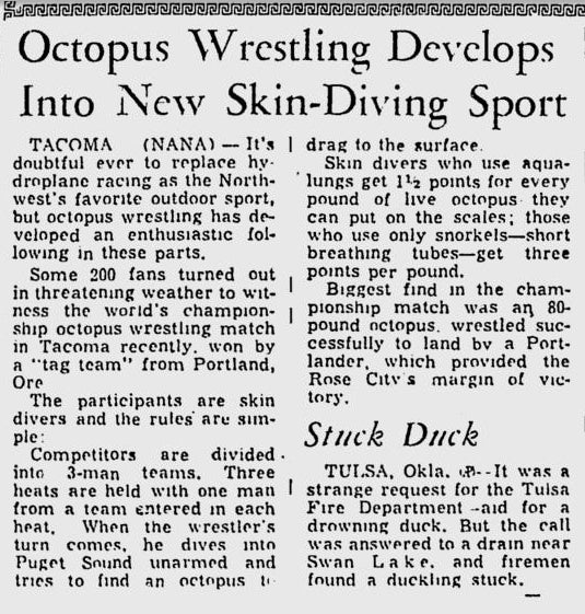 Octopus Wrestling, A Sport That Amounted To Cephalopod Home Invasion