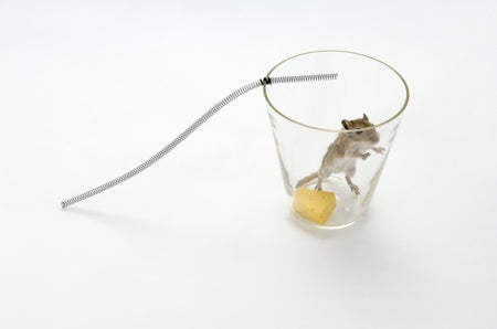 Conceptual Non-Lethal Mousetraps Made from Everyday Objects