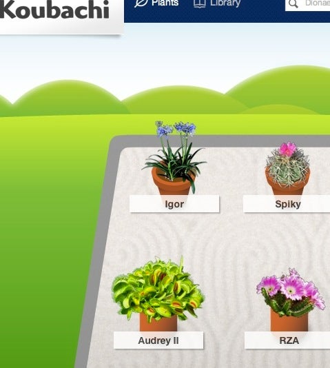 Quit Killing Your Houseplants with the Help of Technology