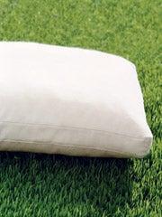 Plump Flattened Cushions in the Sun