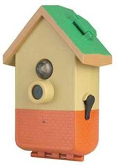 Bird House Camera: Oops, We Forgot the Bird House!