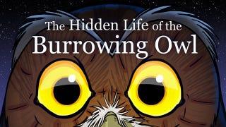 Night Owls Open Thread!