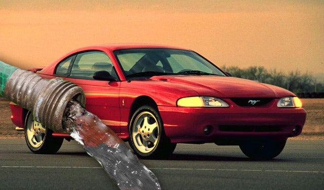 Mustang Forums Trolled With Hilarious Results