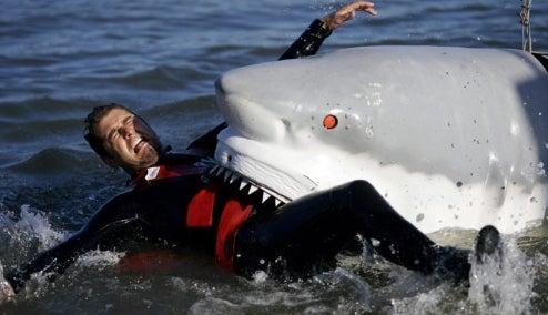 Mythbusters Shark Week: Real Sharks Eat Robot Dog, Robot Shark Eats Real People