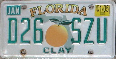 Flordia Gibs Clay