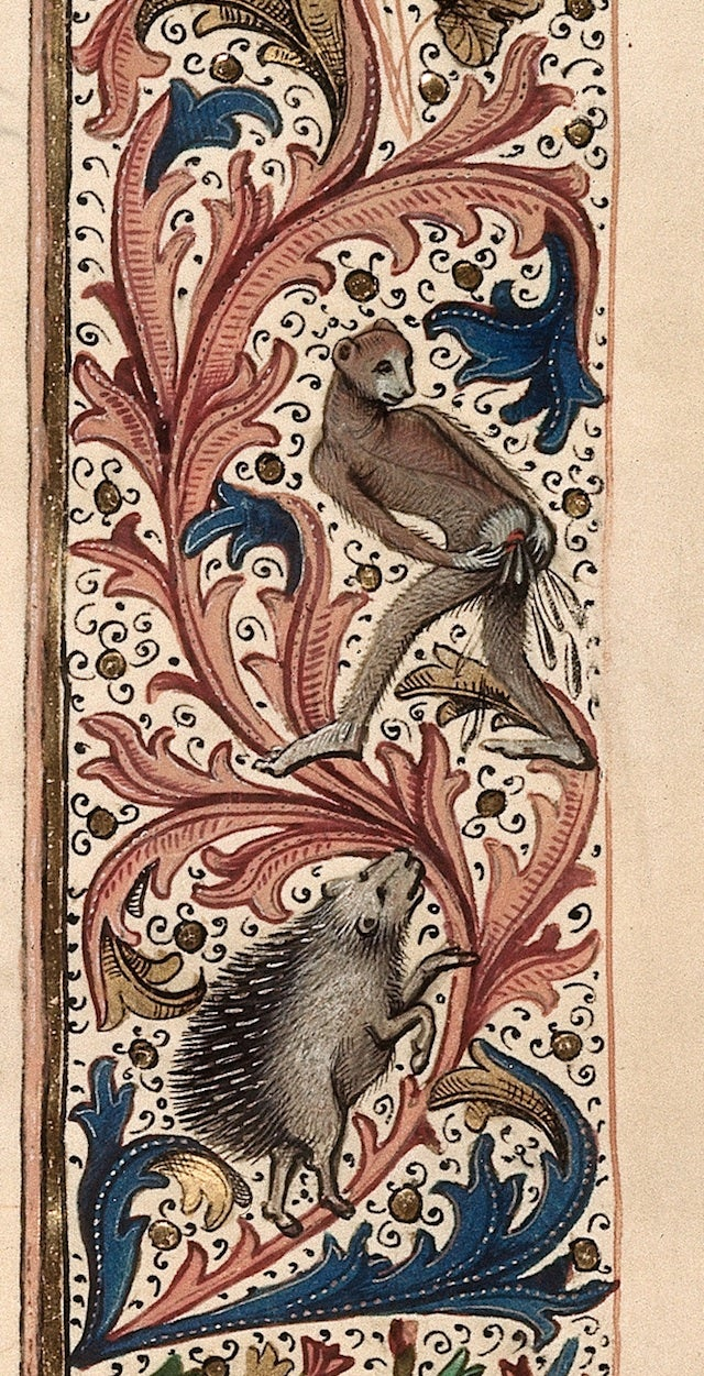 Bizarre and vulgar illustrations from illuminated medieval manuscripts