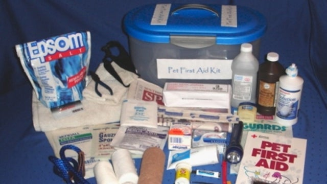 Put Together a Pet First Aid Kit