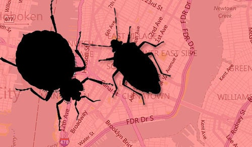 Bedbug Panic Hits the Web: The Interactive Map