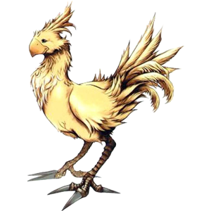 A word about chocobos...