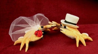 Scoring Sunday's Nuptials: Creative Types' Weddings War Over Ivy-Strewn Battlegrounds