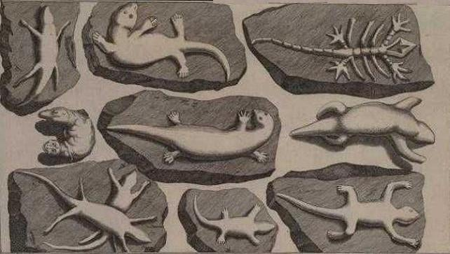 Back in the 1700s, two science professors created the world's first fossil hoax to prank a religious colleague