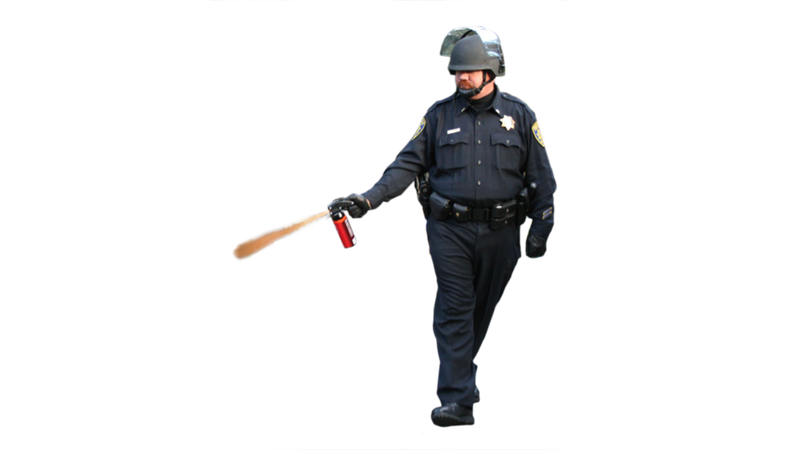 UC Davis Pepper Spray Cop Is Now a Meme