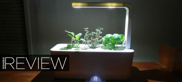Click and Grow Smart Farm Review: Idiot-Proof Indoor Farming
