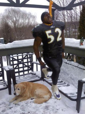 Here's A Picture Of Ray Lewis Hanging In Effigy Near Pittsburgh