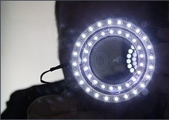 Make a DIY Ring Light for Better Macro Shots