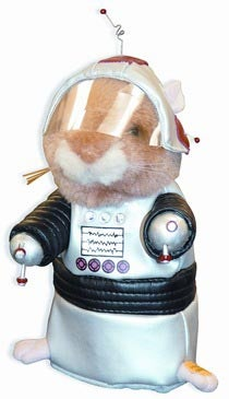 Hal the Robot Hamster Loves Dancing to Styx, Sniffing Stuff