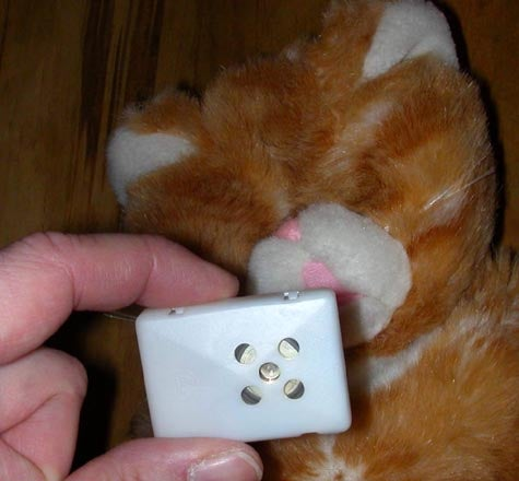 If You Can't Buy It, Build It: Wanky The Safety Cat