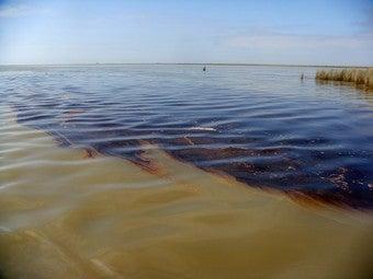 Hidden Cause Of Oil Spill: Porn
