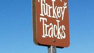 Route 66 turkey tracks
