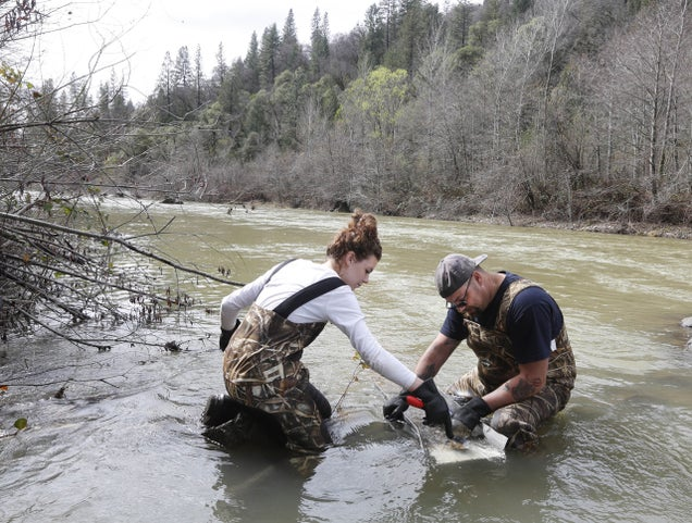 Why California's Drought Is Good News for Gold Prospectors