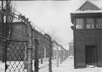 Auschwitz, Remembered on Facebook