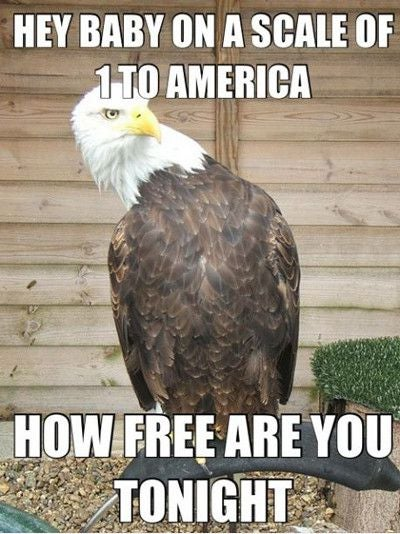 4th of July pickup lines