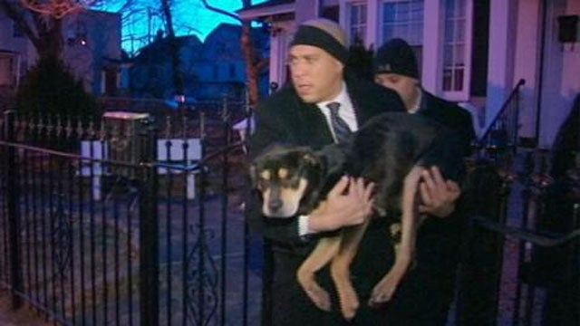 Super Human Cory Booker Is Now Personally Rescuing Animals from the Cold