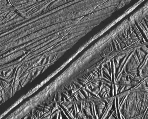 The Ice Fracture Explorer: A probe that could hunt for life beneath Europa's frozen crust