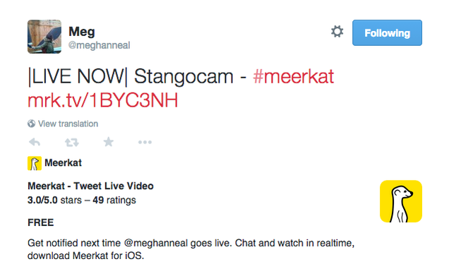 What Is Meerkat, and Should You Even Bother?