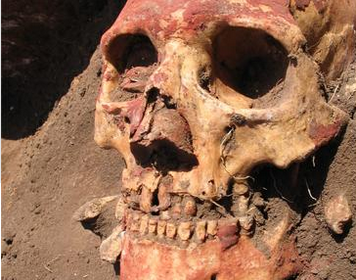 The Plague Has Been Around For a Lot Longer Than We Thought