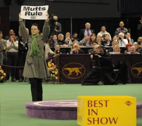 PETA Screws With Dog Show as Usual