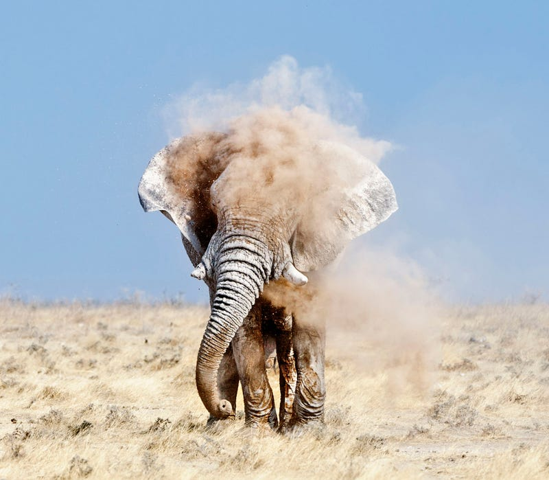 Holy crap, these entries from Nat Geo's 2012 Photo Contest are absolutely gorgeous