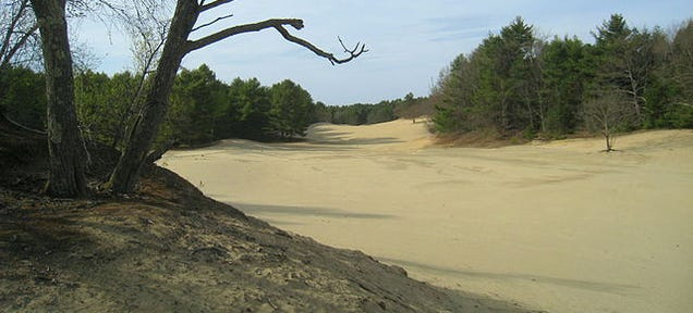 How Forty Acres of Desert Appeared in the Middle of Maine
