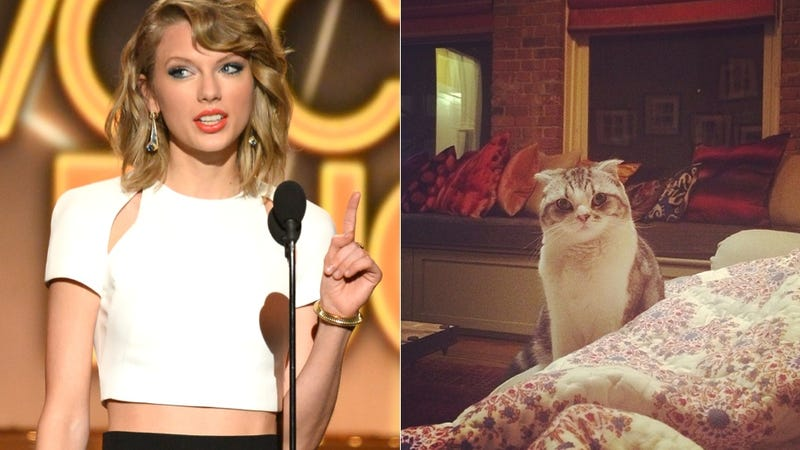 Taylor Swift's Cat Tried to Sabotage Her Princess Moment