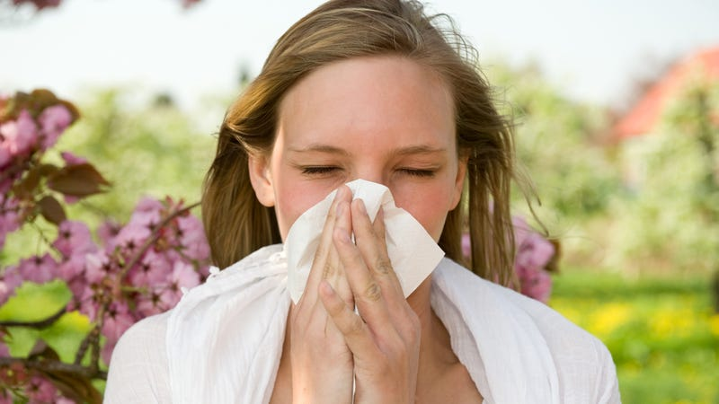 Here are the Worst U.S. Cities For Allergies