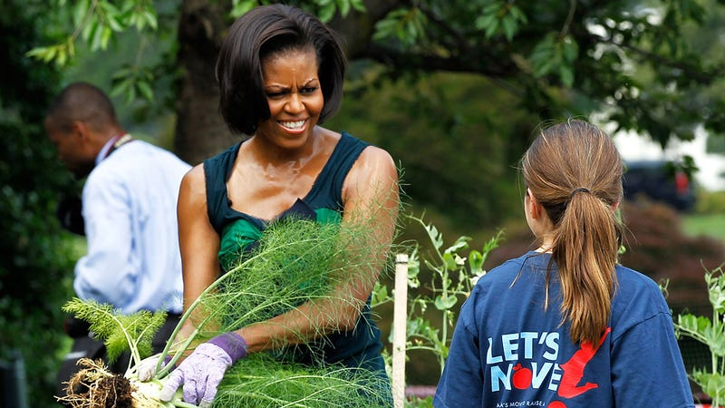 Michelle Obama's Old Neighborhood is the Unhealthiest in America